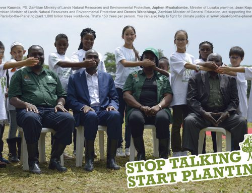 Gehör verschaffen: Über Baumstämme fürs Klima und Stammbäume der Menschen